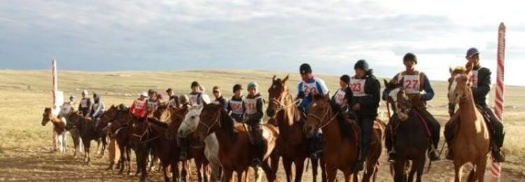Тувинская порода лошадей