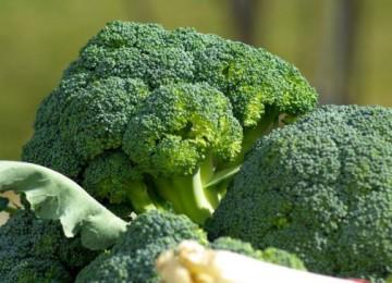 Нужно ли обрывать листья у капусты брокколи?