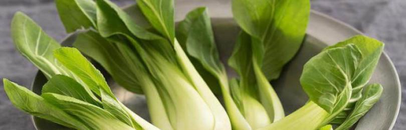 Китайская капуста и ее сорта