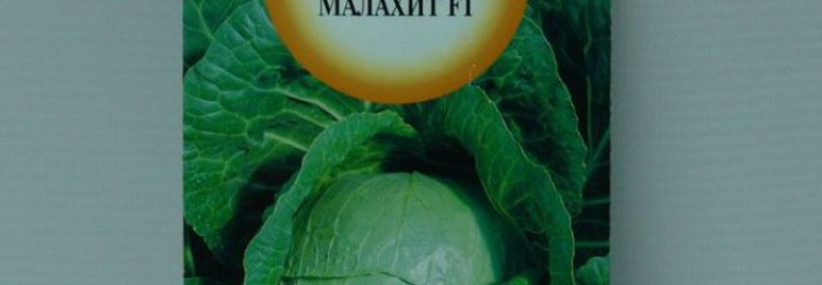Капуста Малахит