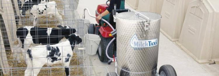 Что такое молочное такси для телят?