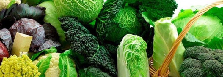 Какие бывают виды и сорта капусты?