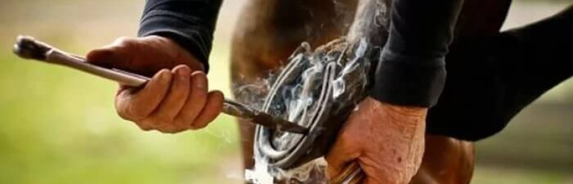 Больно ли лошадям, когда их подковывают?