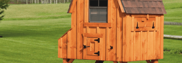 Как построить сарай для кур?