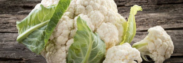 Секреты выращивания цветной капусты в открытом грунте