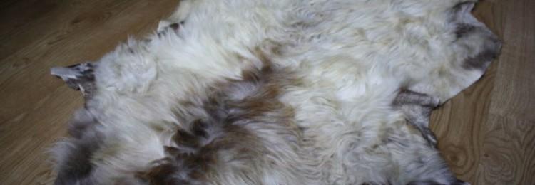 Выделка шкур овец