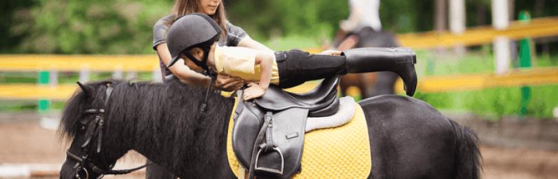 Как обучить лошадь верховой езде?