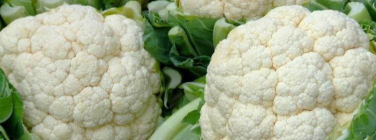 Выращивание цветной капусты Сноуболл
