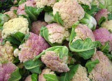 Как определить спелость цветной капусты?