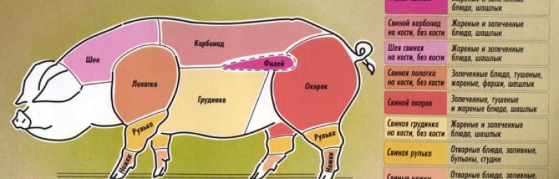 Какая часть свинины считается постной?