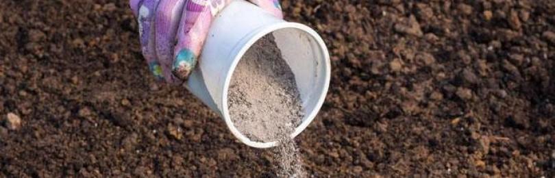 Подкормка капусты в июле – схема и рецепты