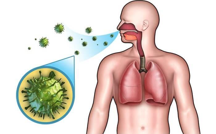 Передача инфекции от человека
