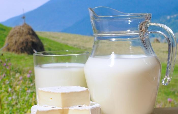 Высокая жирность молока