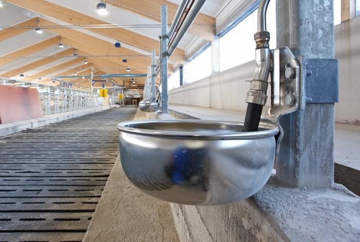 Нужно обеспечить постоянный доступ к чистой воде