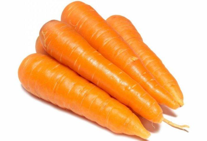 Морковка для кормления молодняка