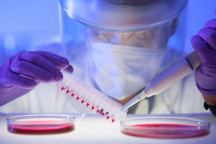Нодулярный дерматит диагностируется в лабораторных условиях