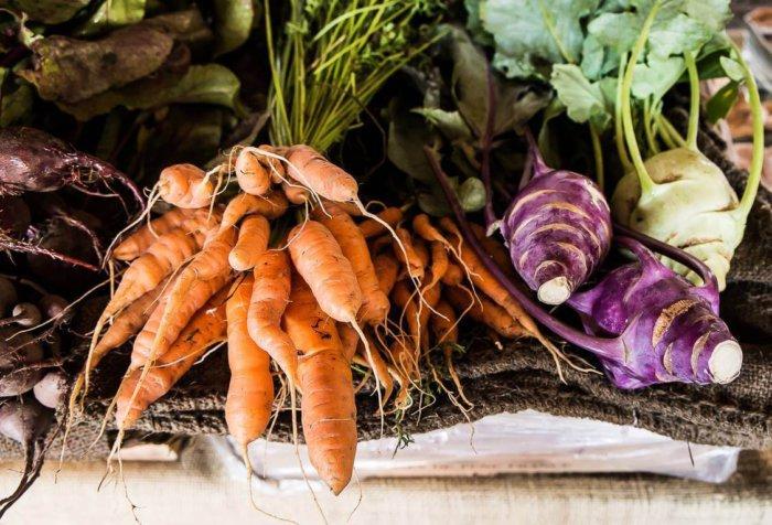 Овощи для кроликов