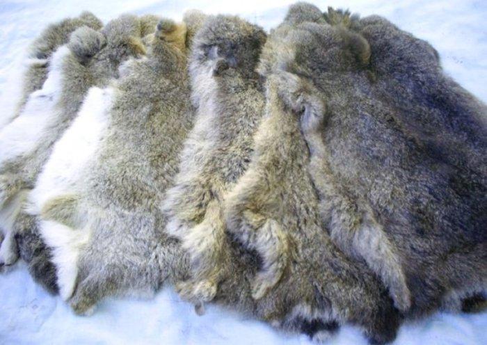 Кроличьи шкурки