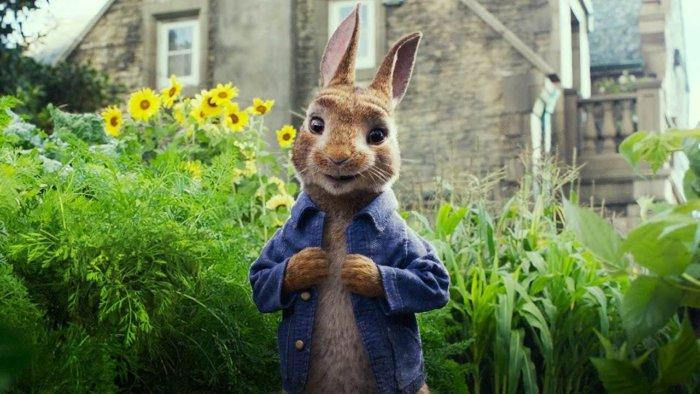Кролик в огороде