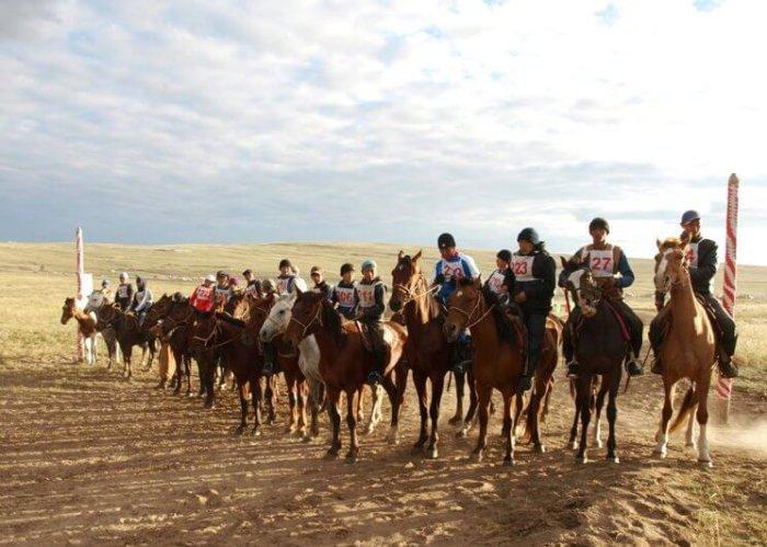 Тувинские кони