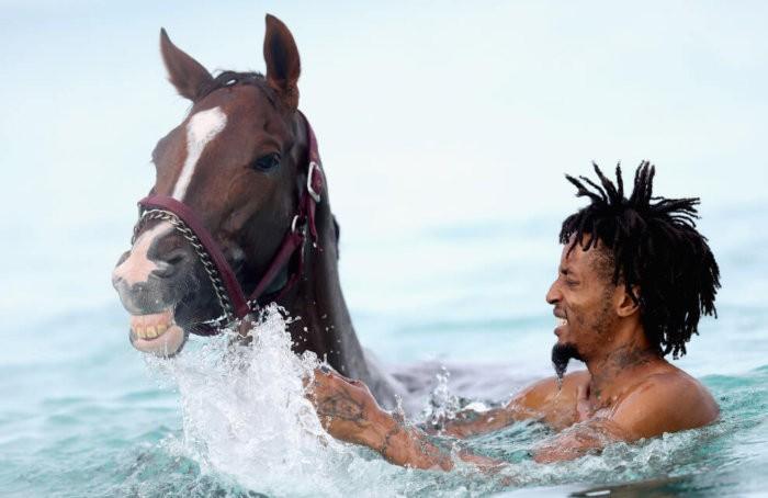 Первое купание коня