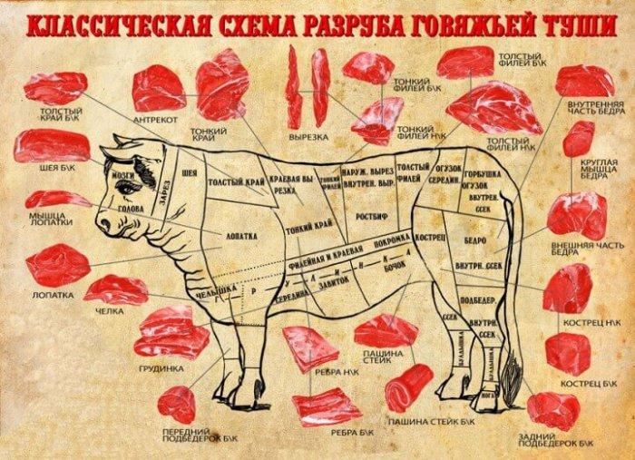 Классическая схема разруба говядины