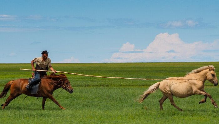 Кочевой народ монголы