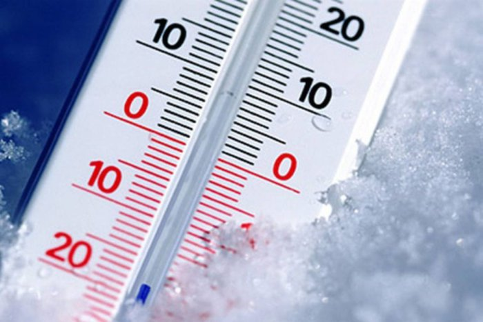 Выбор оптимальной температуры для теплицы