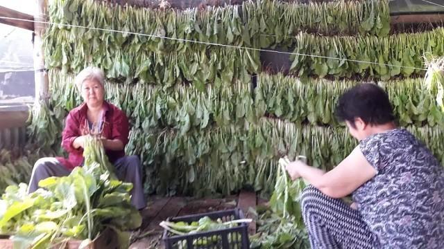 Сушки пекинской капусты