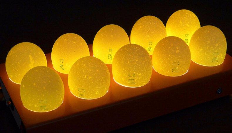 Исследование с яиц помощью овоскопа