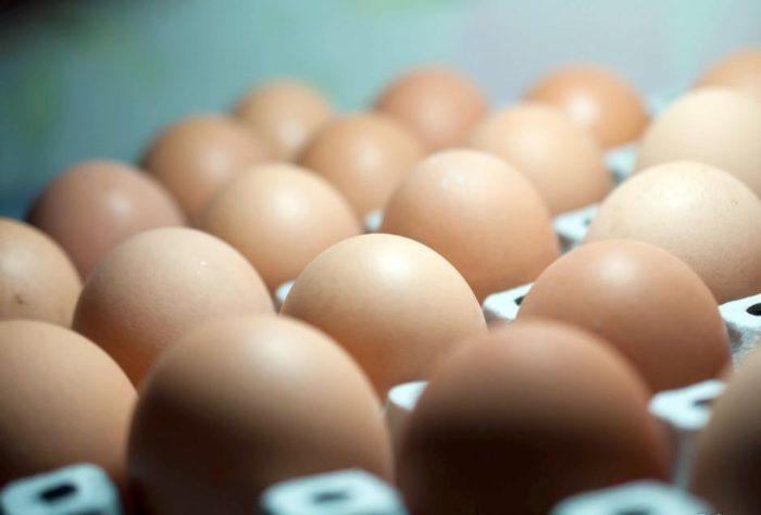 Хохлатыекуры несут яйца кремового цвета