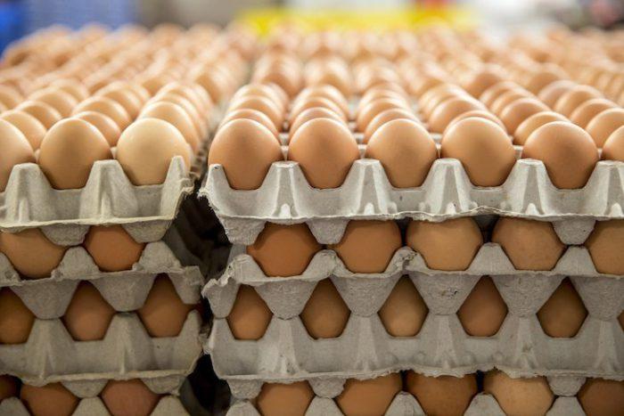 Яйца киргизских кур