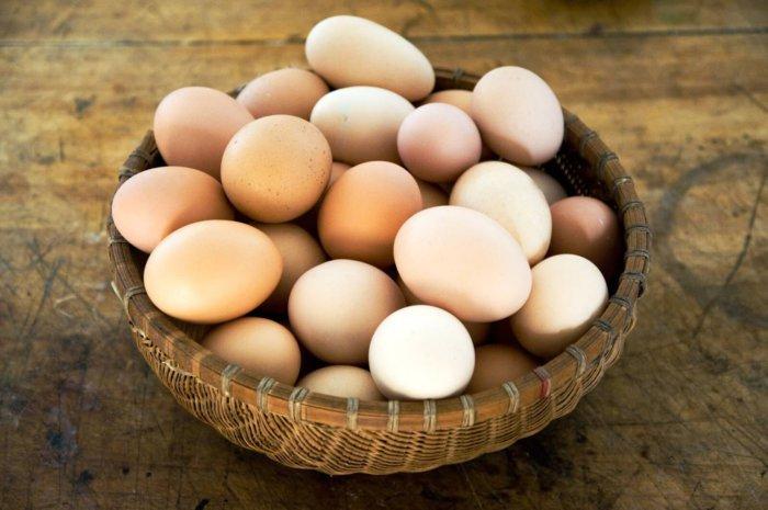 Яйца фокси чик