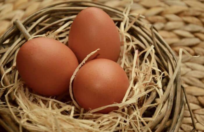 Яйца джерсийских гигантов