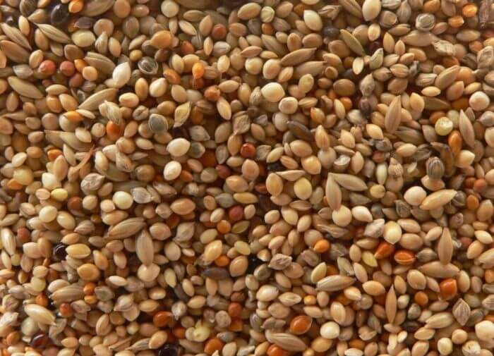 Зерновая смесь