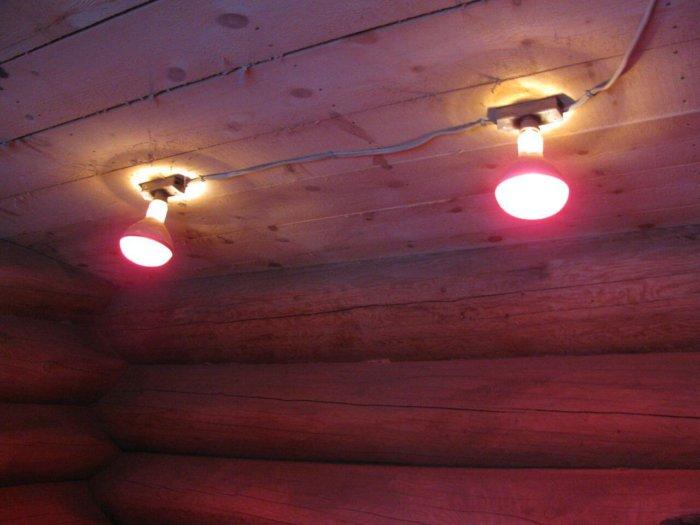 Обогрев курятника инфракрасными лампами