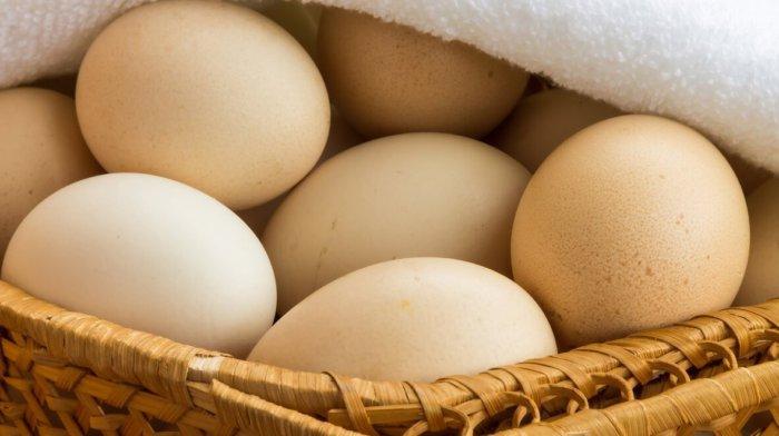 Яйца борковской курицы