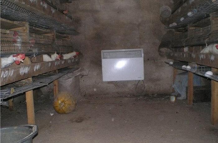 печное отопление в свинарнике фото