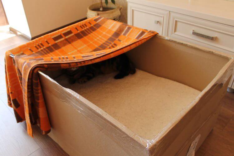 Коробка для родов кошки