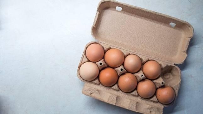 Средний вес яйца