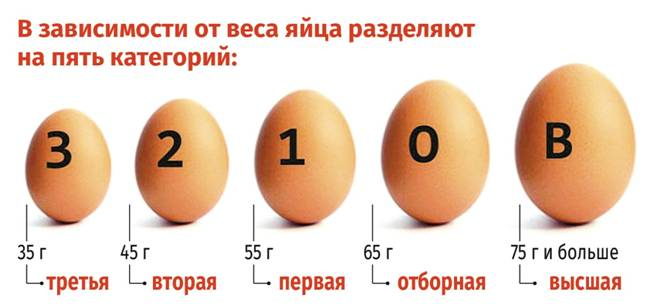 Разные размеры яиц