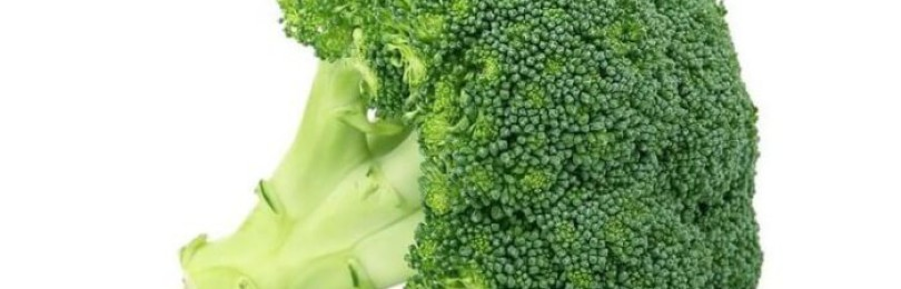 Чем обработать капусту брокколи от вредителей?