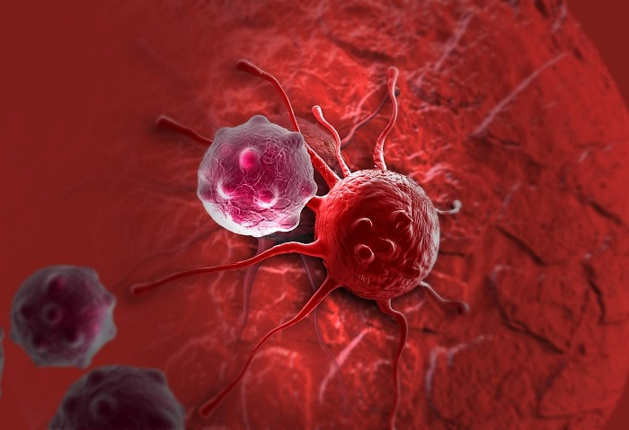 Препятствует образованию раковых опухолей