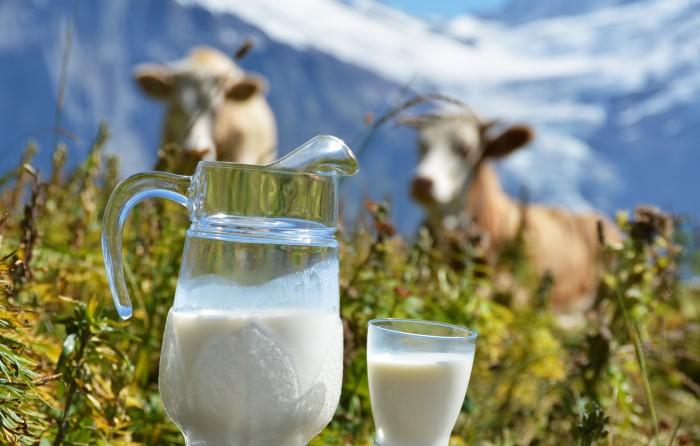 В окружающую среду  выделяются патогены вместе с молоком