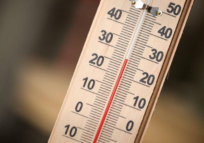 Оптимальная температура в свинарнике +18-20 градусов
