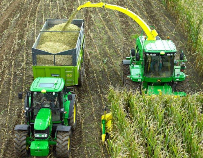 Заготовка кукурузного силоса