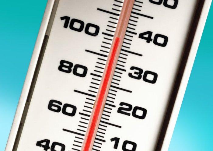 Температурные условия крайне важны