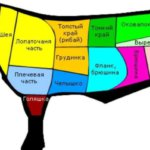 Схема частей туши быка