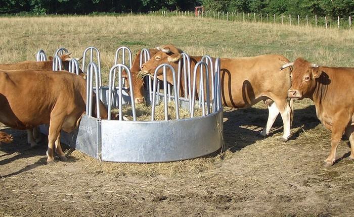Кормушка для коров на пастбище