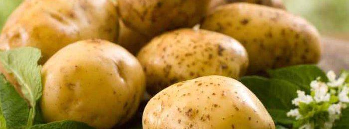 Картофель для кроликов